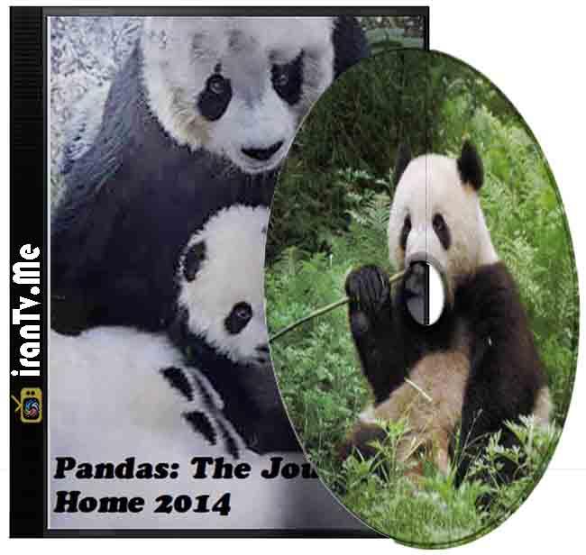دانلود مستند Pandas The Journey Home 2014 پاندا بازگشت به خانه با زیرنویس چسبیده فارسی